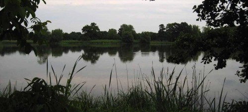 Fischteich bei Stradow