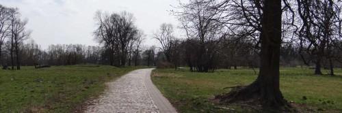 Dorfstraße in Sophiendorf