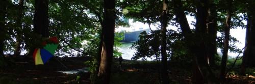 Tagesentwürfe im Uferbereich, Werbellinsee