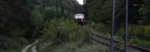 Buckower Kleinbahn beim Schwarzen See