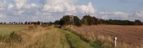 Auf der Spur der Gleise - Weg nach Mildenberg