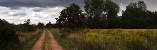 Auf dem Druckrohrweg, bei Schönow