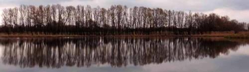 Blick über den Mühlensee nach Vehlefanz
