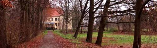 Allee zum Schloss Schwante