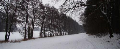 Talgrund zwischen Waldhang und Bruchwald des Zochegraben