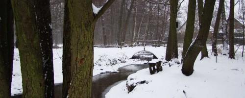Im bezaubernden Tal des Neuenhagener Mühlenfließes