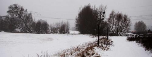 Im Naturschutzgebiet Wiesengrund