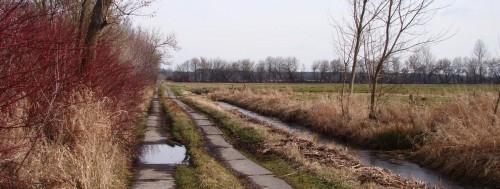 Teils nasser Weg bei Dobbrikow