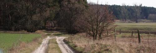 Wäldchen bei Hennickendorf
