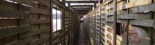 Verkleideter Steg am Riebener See