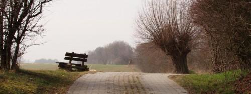 Radweg nach Arensdorf oberhalb der Weiherkette