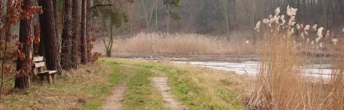 Im kleinen Talgrund am Mühlenteich