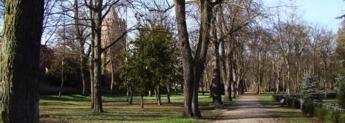 Im Stadtpark an der Ostmauer