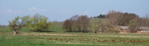 Rebenhang am Klosterberg, Neu Töplitz