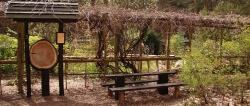 Stammplatz, Haus des Waldes