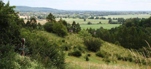 Blick vom Liebenstein ins Niederoderbruch und zur Neuendorfer Insel