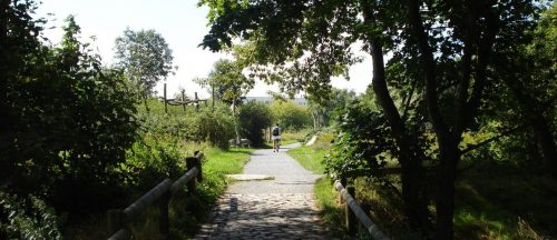 Am Seegraben bei Falkenberg Dorf