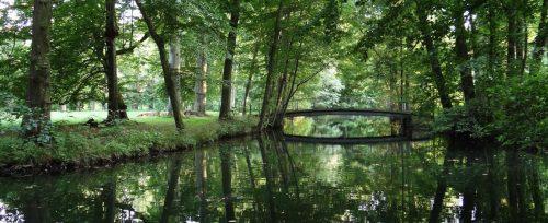 Spreewald-Impression an der Insel im Bucher Schlosspark