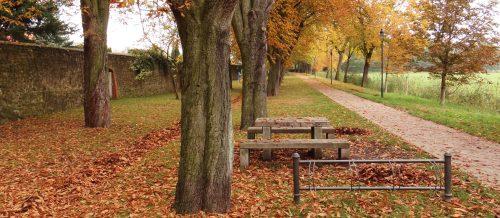 Herbstlicher Mauerweg am Storchenturm