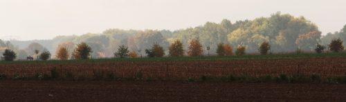 Blick über die Felder Richtung Hoppegarten