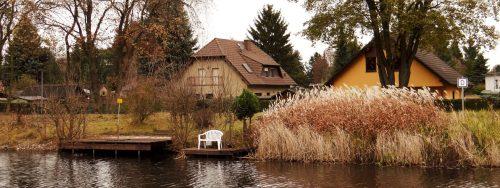 Steg-Schilf-Idyll am jenseitigen Ufer