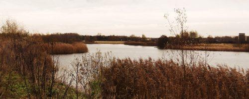 Blick über den Leegebrucher Baggersee