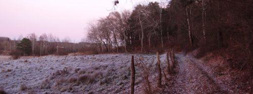 Frostiger Weg am Nordhang