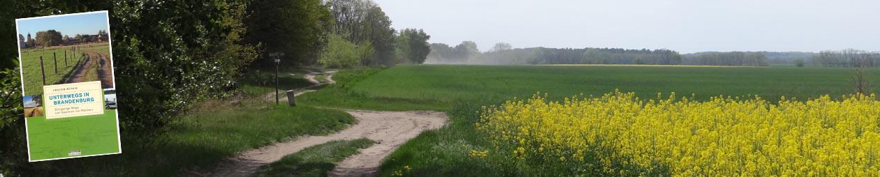 Wegesammler Brandenburg | Reportagen